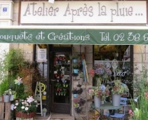 The perfect place to buy flowers