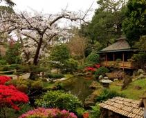 Japanese Tea Garden: a piece of Japan in California